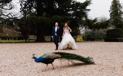 Northbrook Park Wedding Photographer – Nicola & James