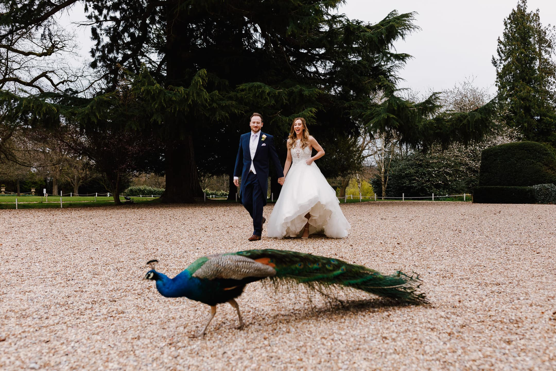 Northbrook Park Wedding Photographer – Nicola & James